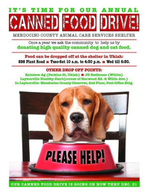 Canned food drive at the ukiah animal shelter pawprints on my heart